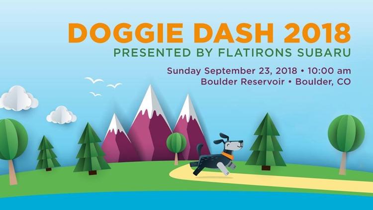 Doggie Dash 2018