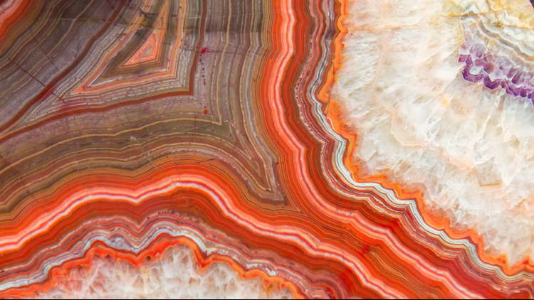 Red Agate mineral show fossil show