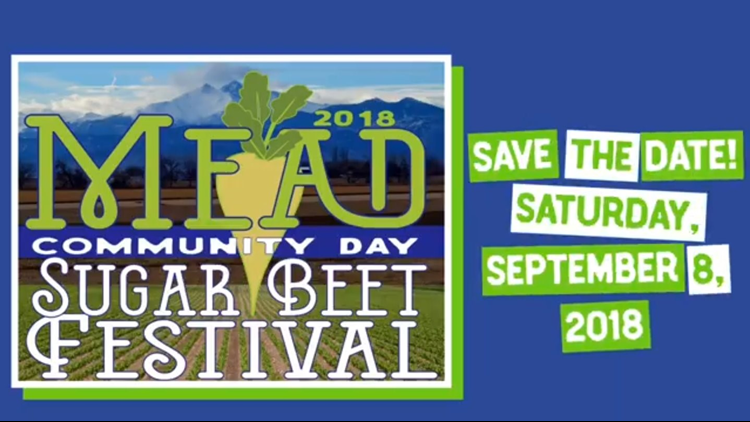Mead Community Day Festival