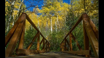Your 2018 Colorado fall colors questions answered