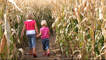 A list of corn mazes in Colorado in 2019
