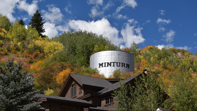 minturn_thing_with_leaves_1536865448661.png