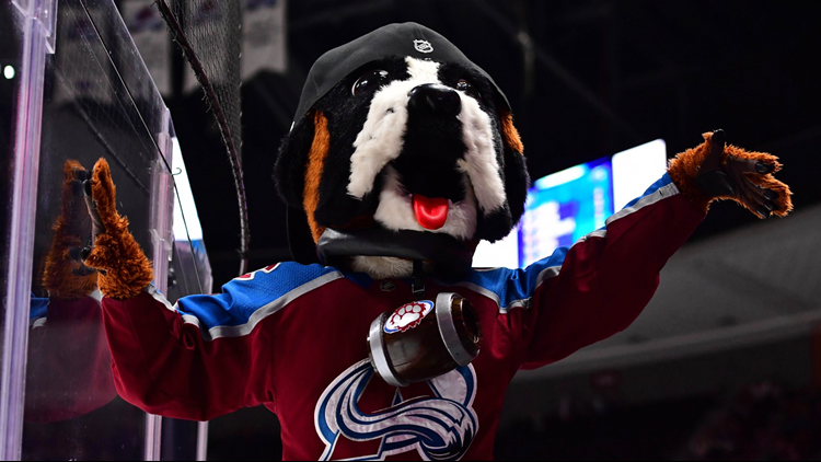 Colorado Avalanche mascot Bernie at glass