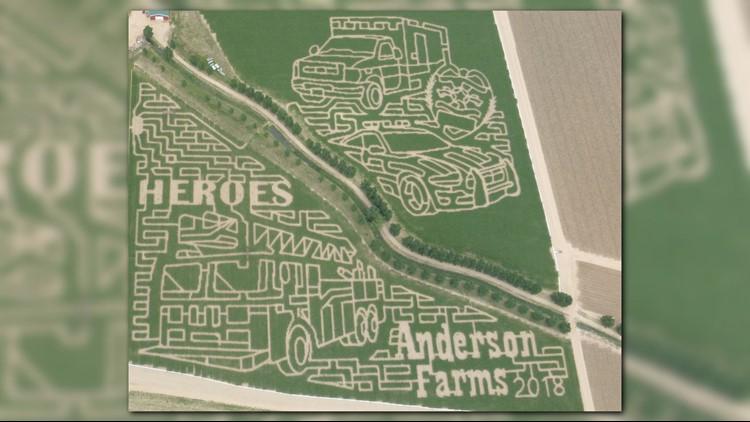 Anderson Farms Made A Corn Maze