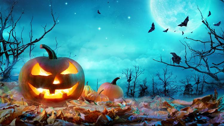 Spooky Forest Halloween Scene