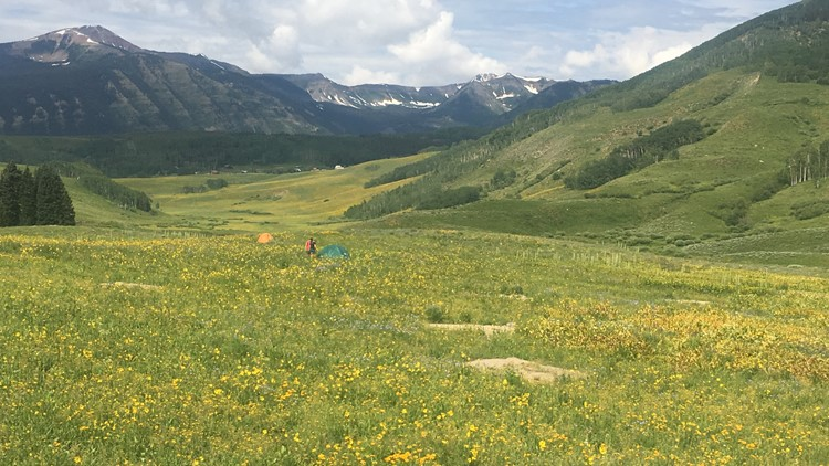 Mt. Crested Butte Campground