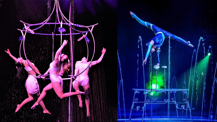 Cirque Italia collage