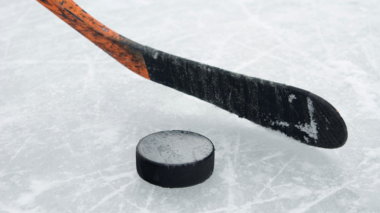 ice hockey puck and stick 2