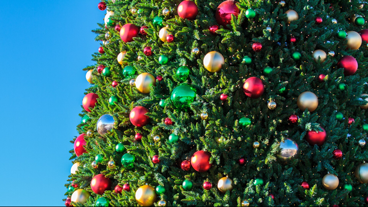 Castle Rock Starlighting Christmas Tree 2017
