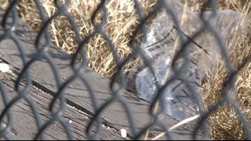 Denver City Council members consider a plastic bag ban