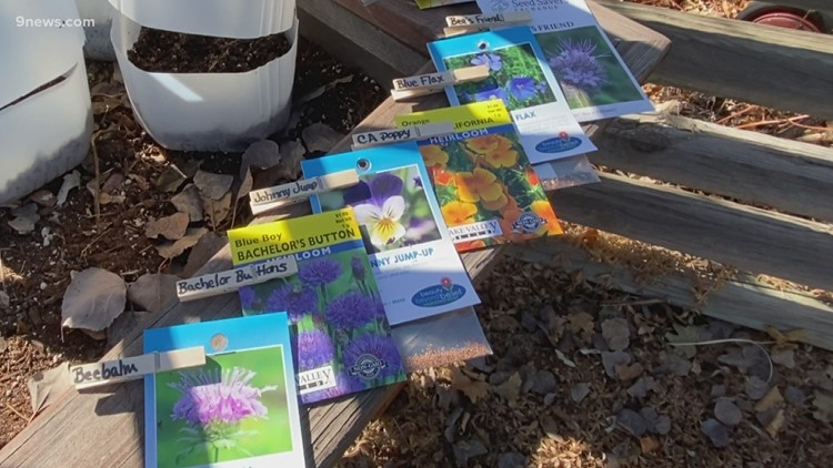 Proctor's Garden: Winter seed starting