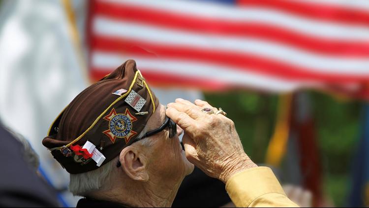 Veteran saluting memorial day veterans day