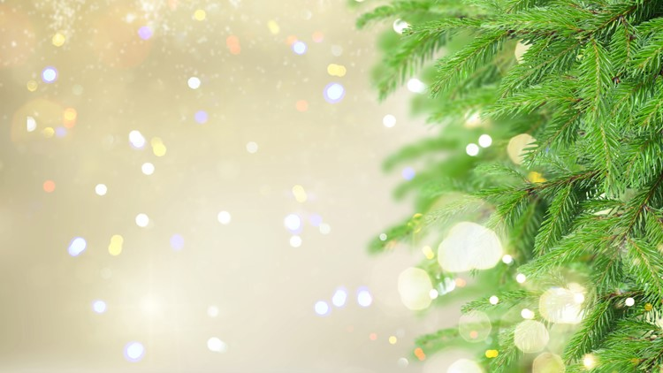 christmas tree generic-432346027