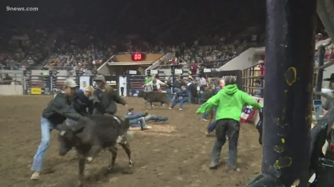 Catch-a-Calf: How responsibility emerges from complete chaos