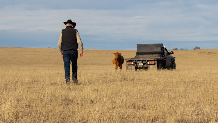 Rush Colorado plains Bryan