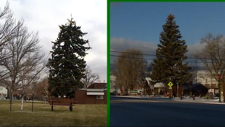 Christmas tree debate edit_1544037760828.png.jpg