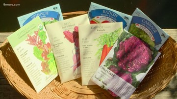 Proctor's Garden: Time to plant peas and potatoes