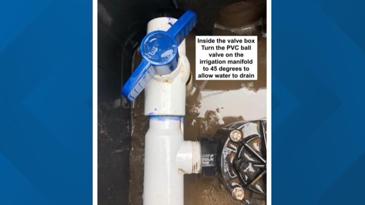 Water release valve