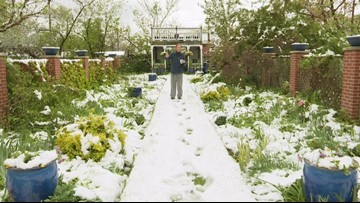 Proctor's Garden: Trying weather week exposes Mother's Day planting fallacy