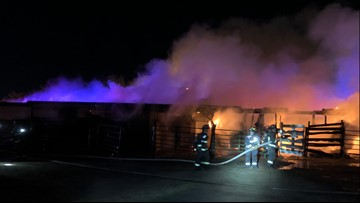 Firefighters save 6 horses from Aurora barn fire