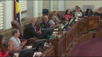 Denver City Council approves Peña Boulevard expansion