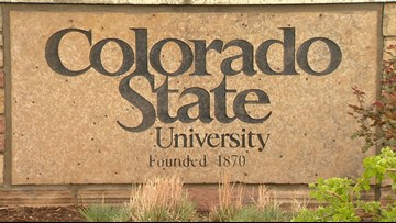 CSU professor issued citation for illegally possessing 5 crows