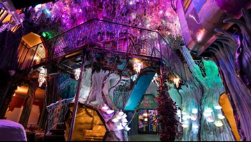 Meow Wolf CEO announces he would step down