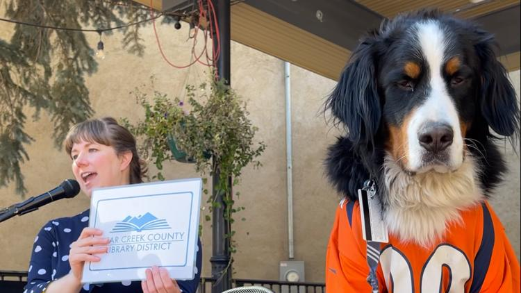 Parker the Snow Dog gets library card in Clear Creek County