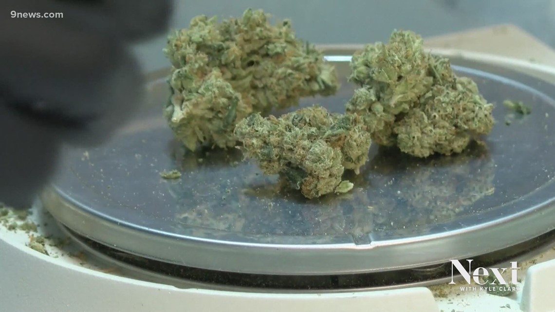 Report: Marijuana legalization did not increase pot use in teens