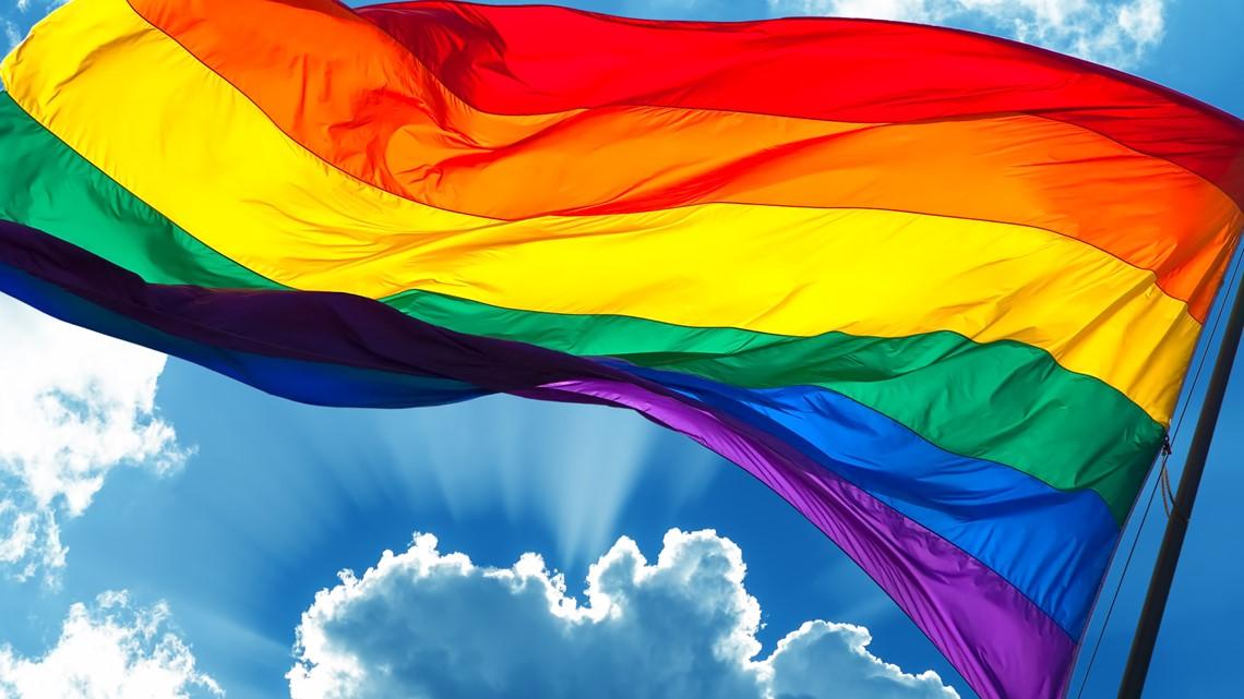 Filling in education gaps: LGBTQ+ history
