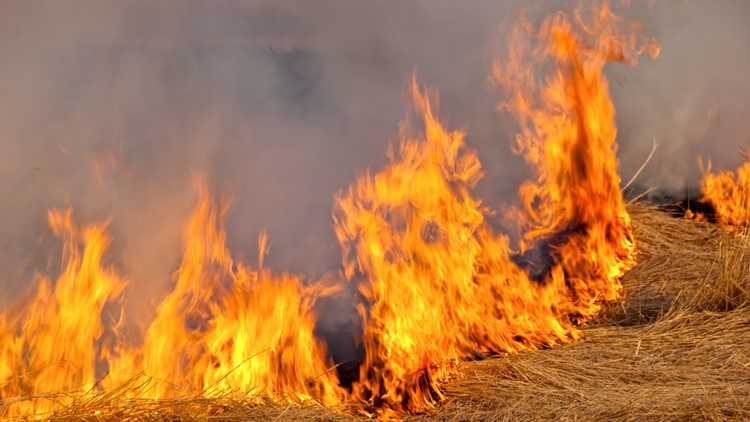Prescribed burning planned Monday at Rocky Mountain Arsenal