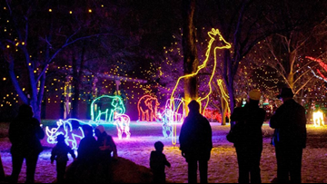 Denver Zoo's 29th annual Zoo Lights kicks off this month