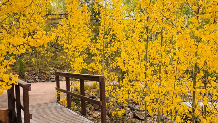 Fall colors around Colorado in 2020