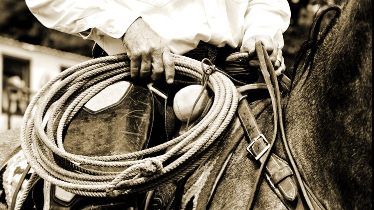 Close-up of an authentic working cowboy riding and preparing to use his rope during the course of his job - sepia tint added for vintage look and feel. rodeo
