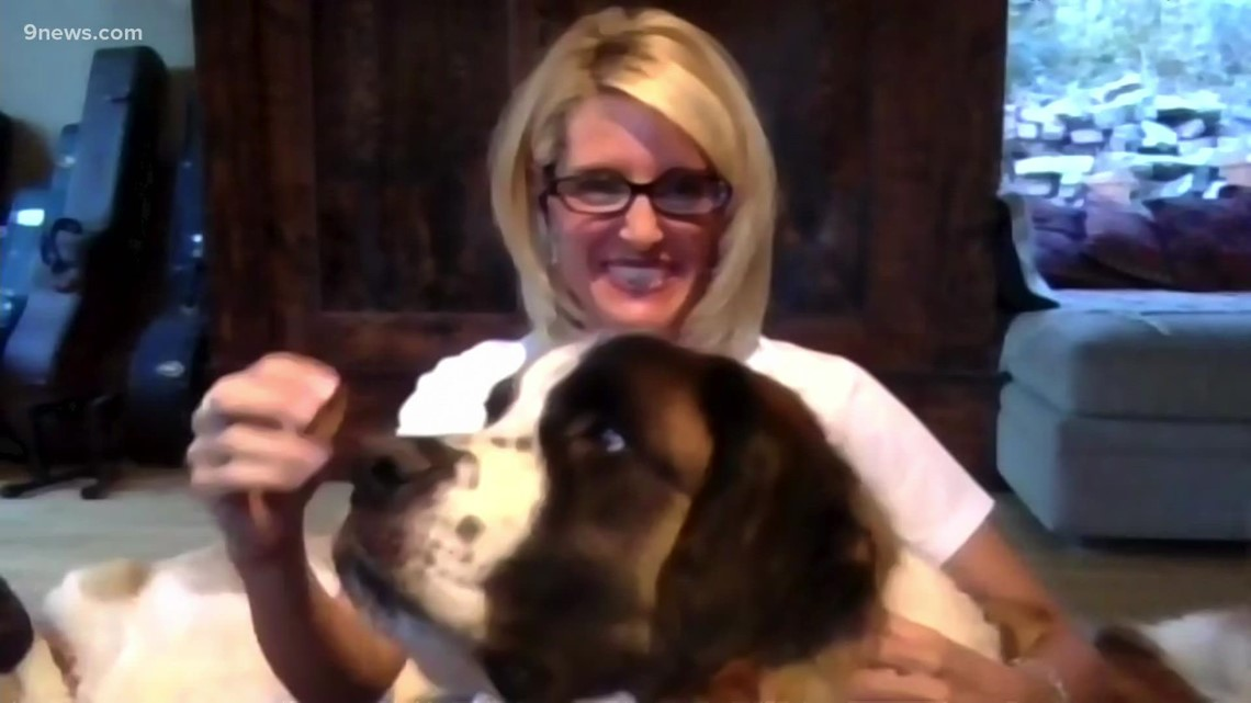 Petline 9: Moose and Yeti look for forever home