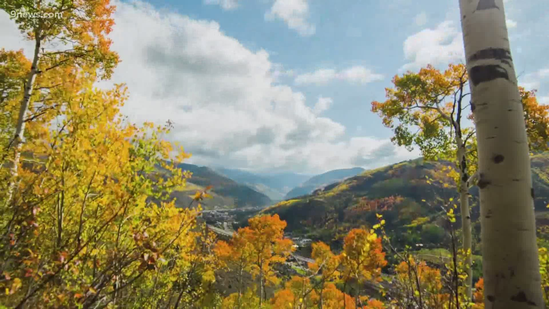 Colorado Fall Colors When And Where Leaves Will Peak In 2020 9news Com