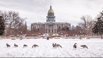Brace yourselves: Farmers' Almanac predicts frigid, snowy winter in Colorado