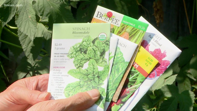 Proctor's Garden: Time to plant fall veggies