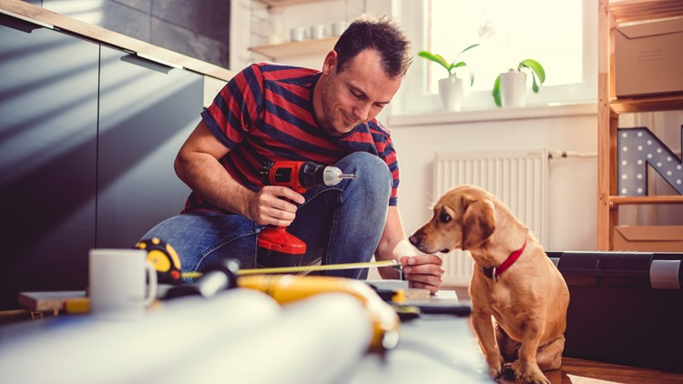 home repair remodeling home construction man with dog renovation