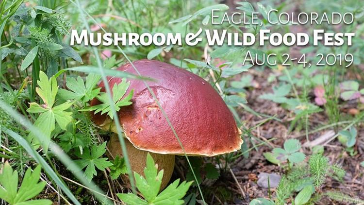 Eagle Mushroom & Wild Food Festival
