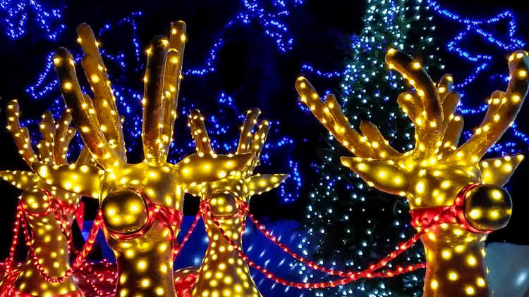 Christmas lights of reindeers outdoor decorations