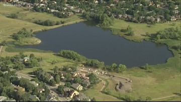 Dogs, children at risk after potentially harmful blue-green algae confirmed in multiple Colorado lakes