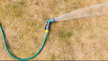 How bad is this dry spell hurting your lawn?