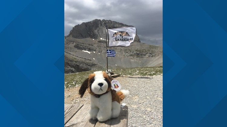 Bernie the stuffed dog at Mt. Olympus