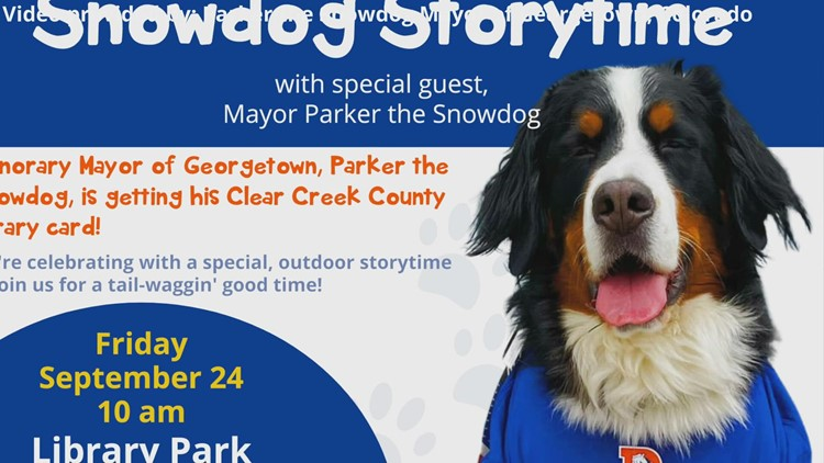 Snowdog, Parker gets his library card at Clear Creek County Library District