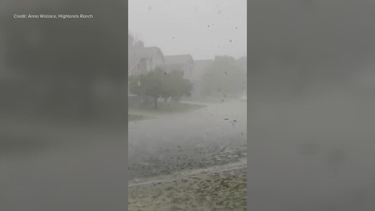 Heavy rain, hail rips leaves from trees in Highlands Ranch