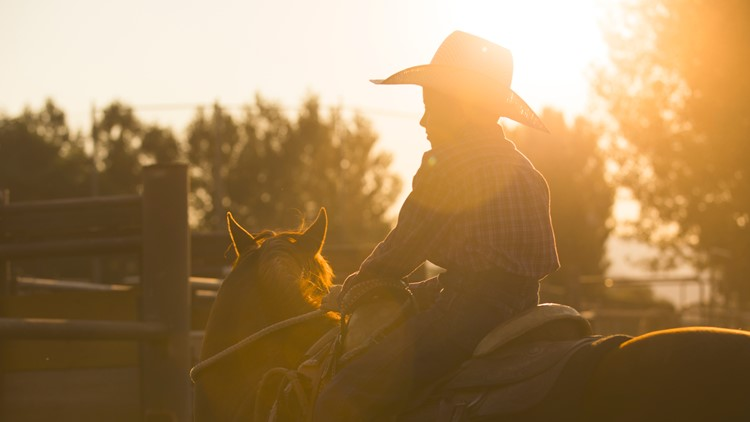 A boy on a horse in the early morning light cowboy boots rodeo