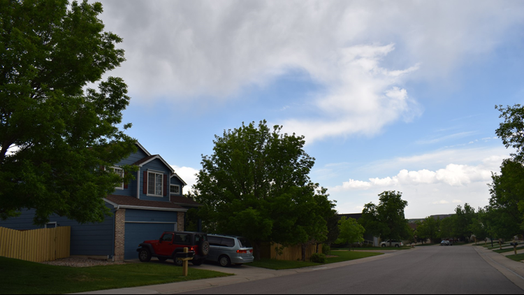 A tree-lined street in a Superior subdivision.