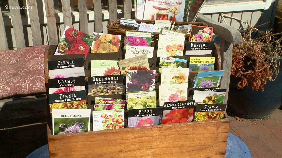 Proctor's Garden: How to order seeds
