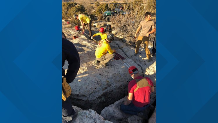 Mesa County dog rescue